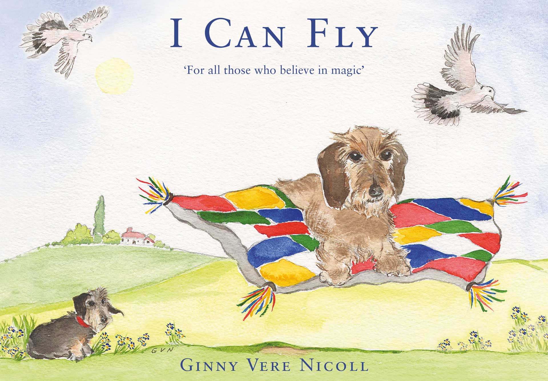 I Can Fly by Ginnny Vere Nicoll